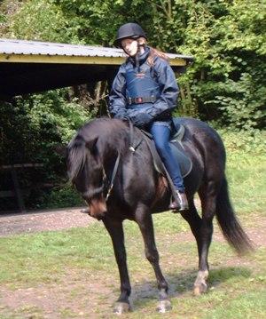 Ponycamp2005web02