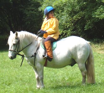 Ponycamp2005web04