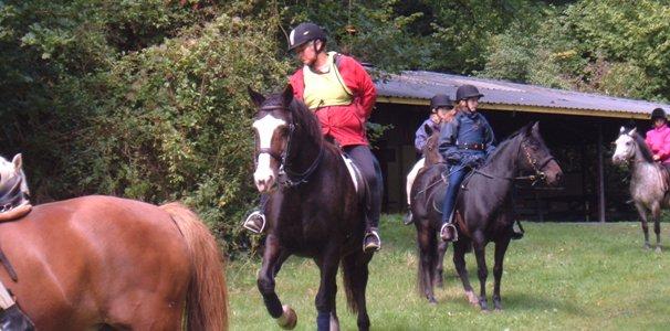 Ponycamp2005web3