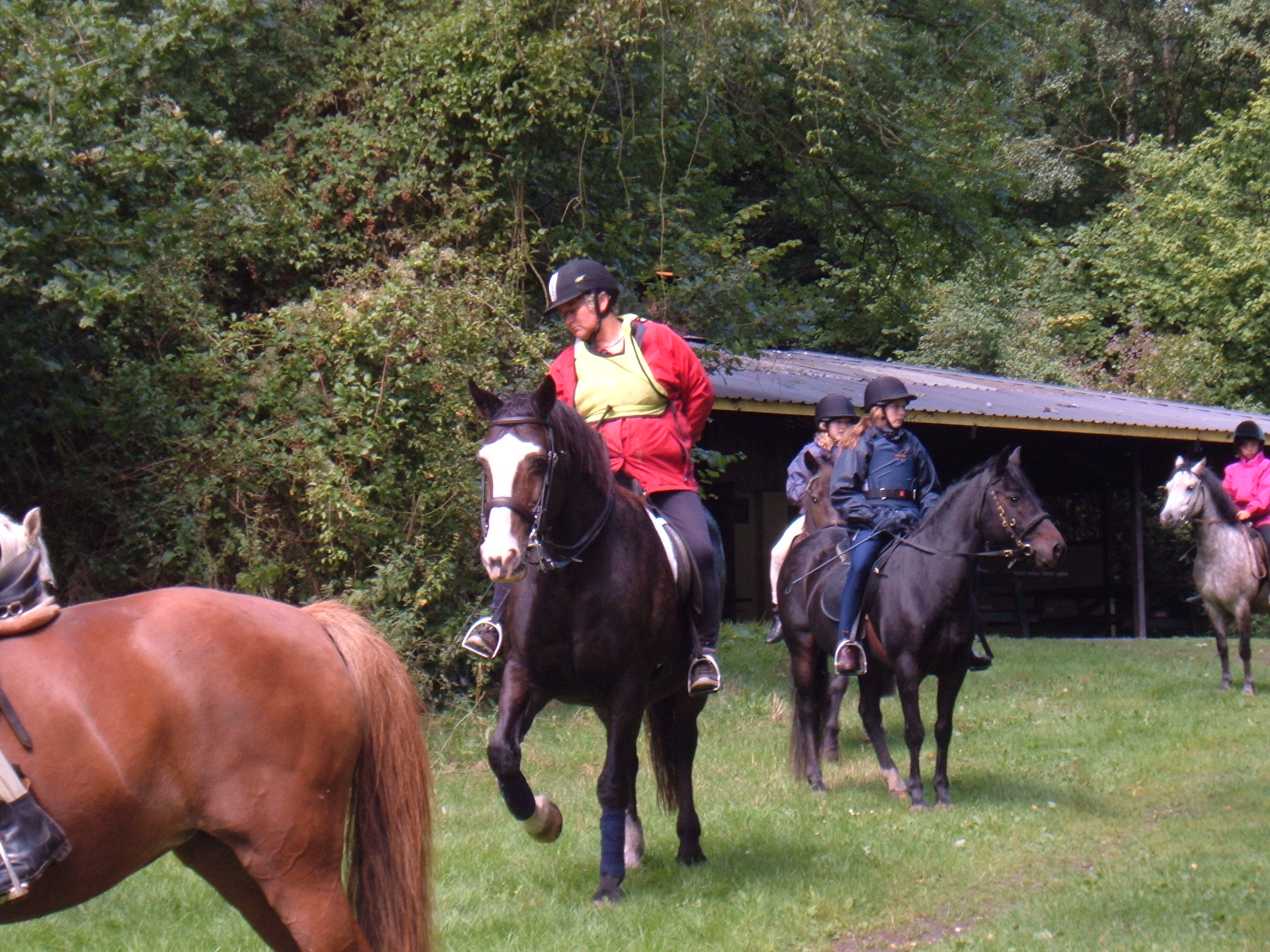 Ponycamp3 2005 0818.jpg