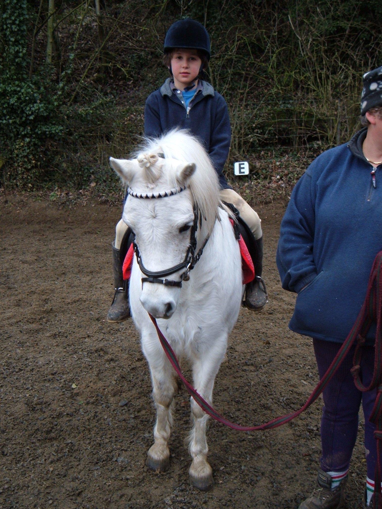 Pony Day Feb 06 020