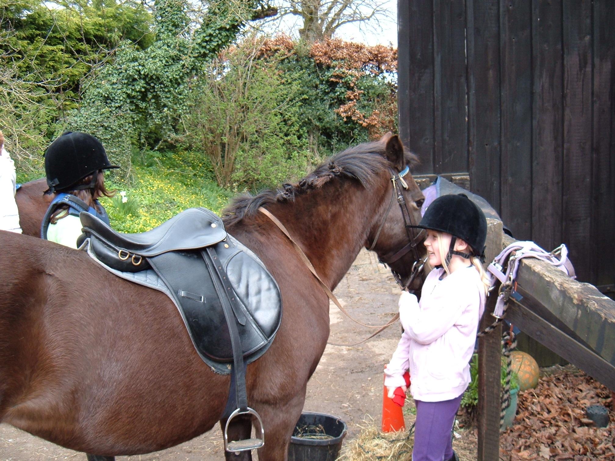 Pony Day 13 April 06 001