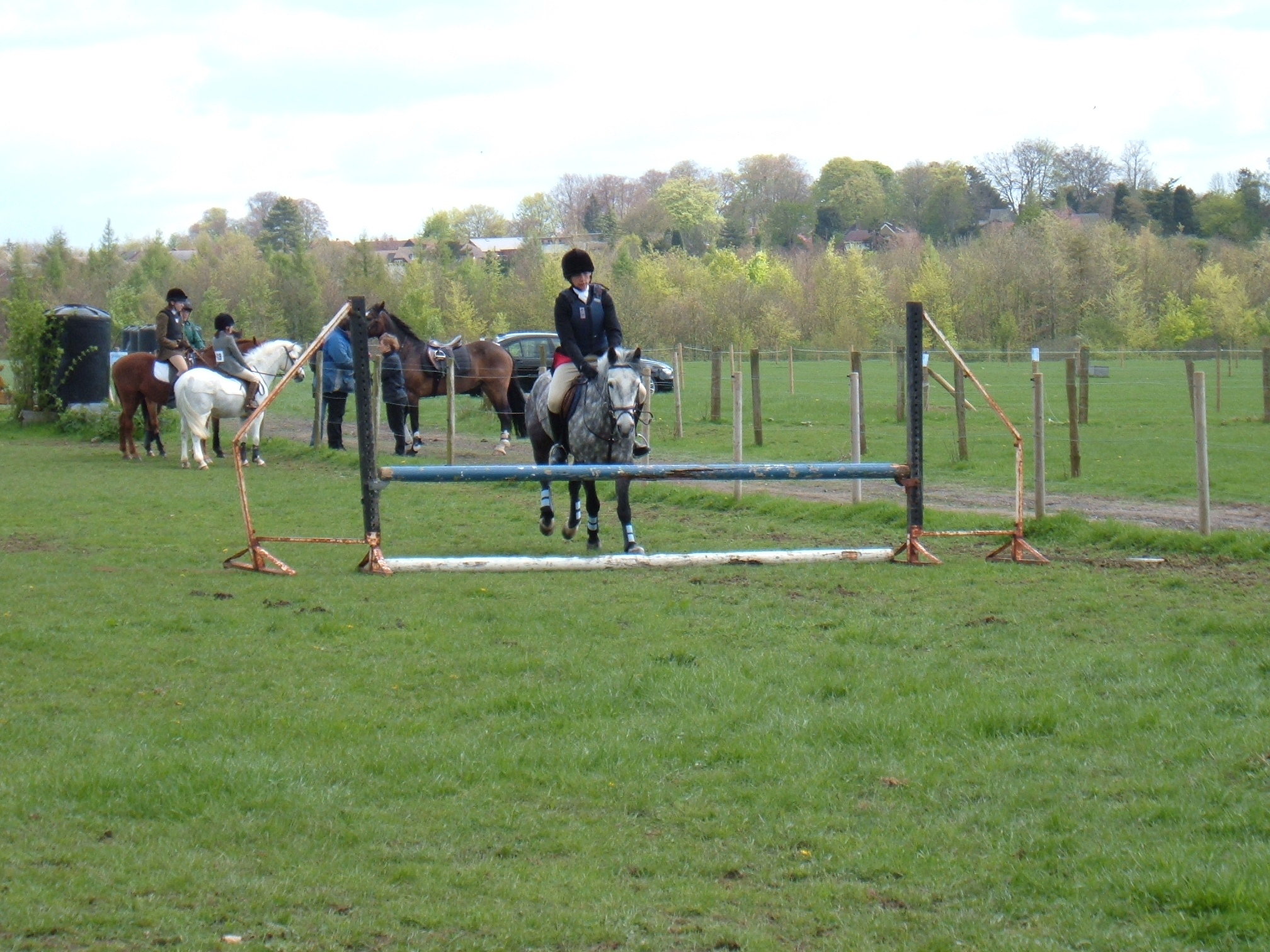 Showjumping Monday 003