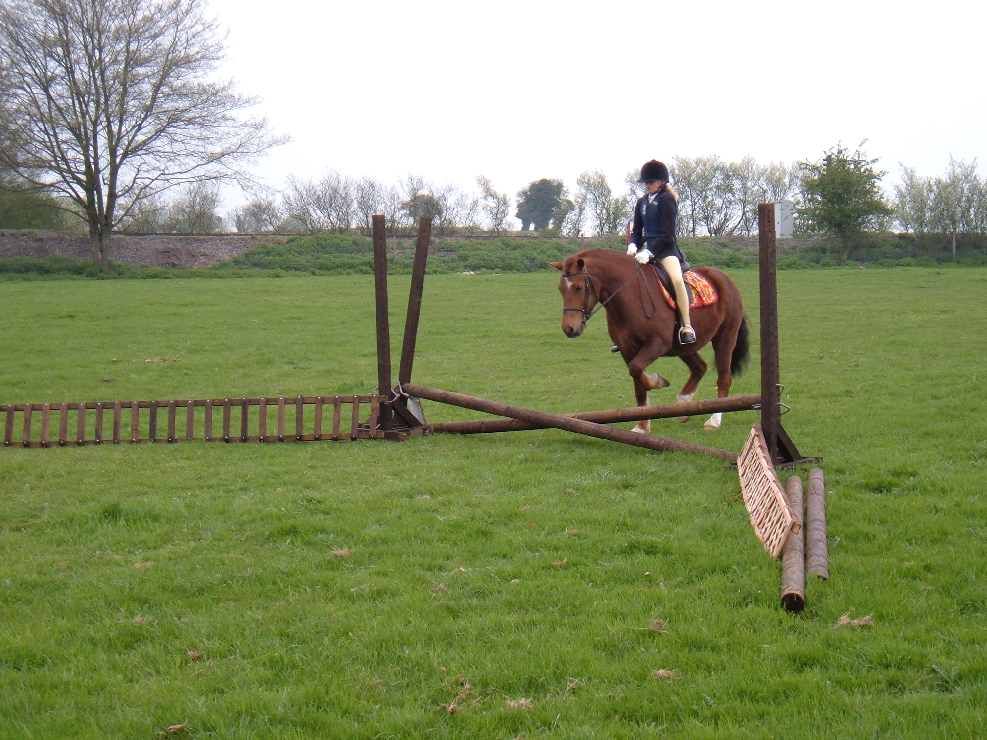 Showjumping sunday 004