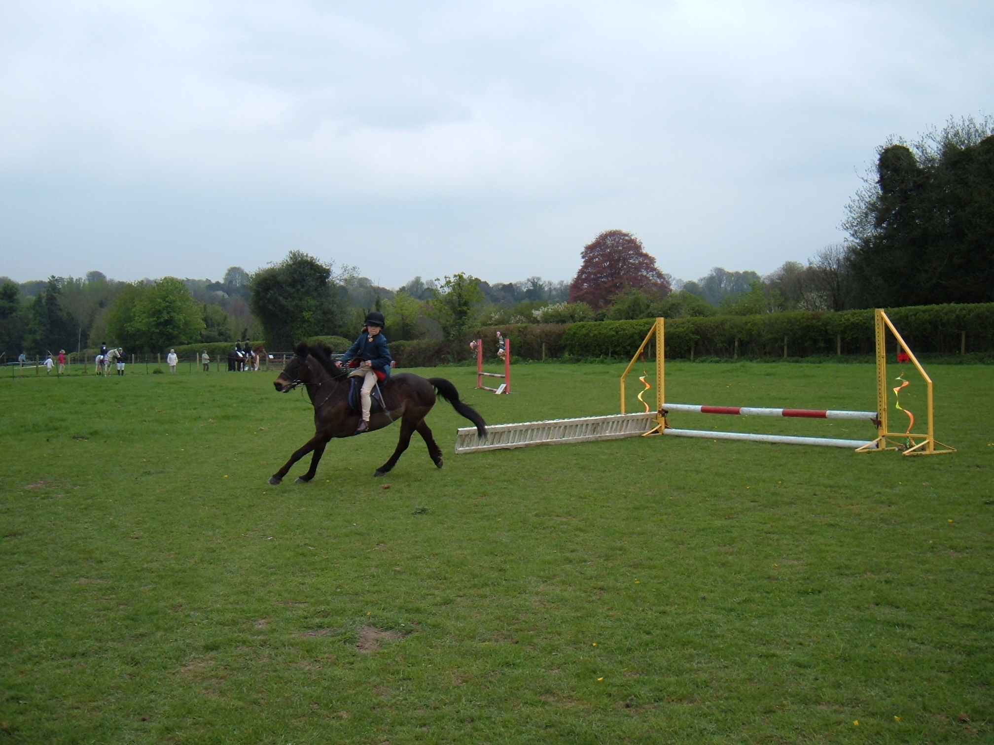 Showjumping sunday 054