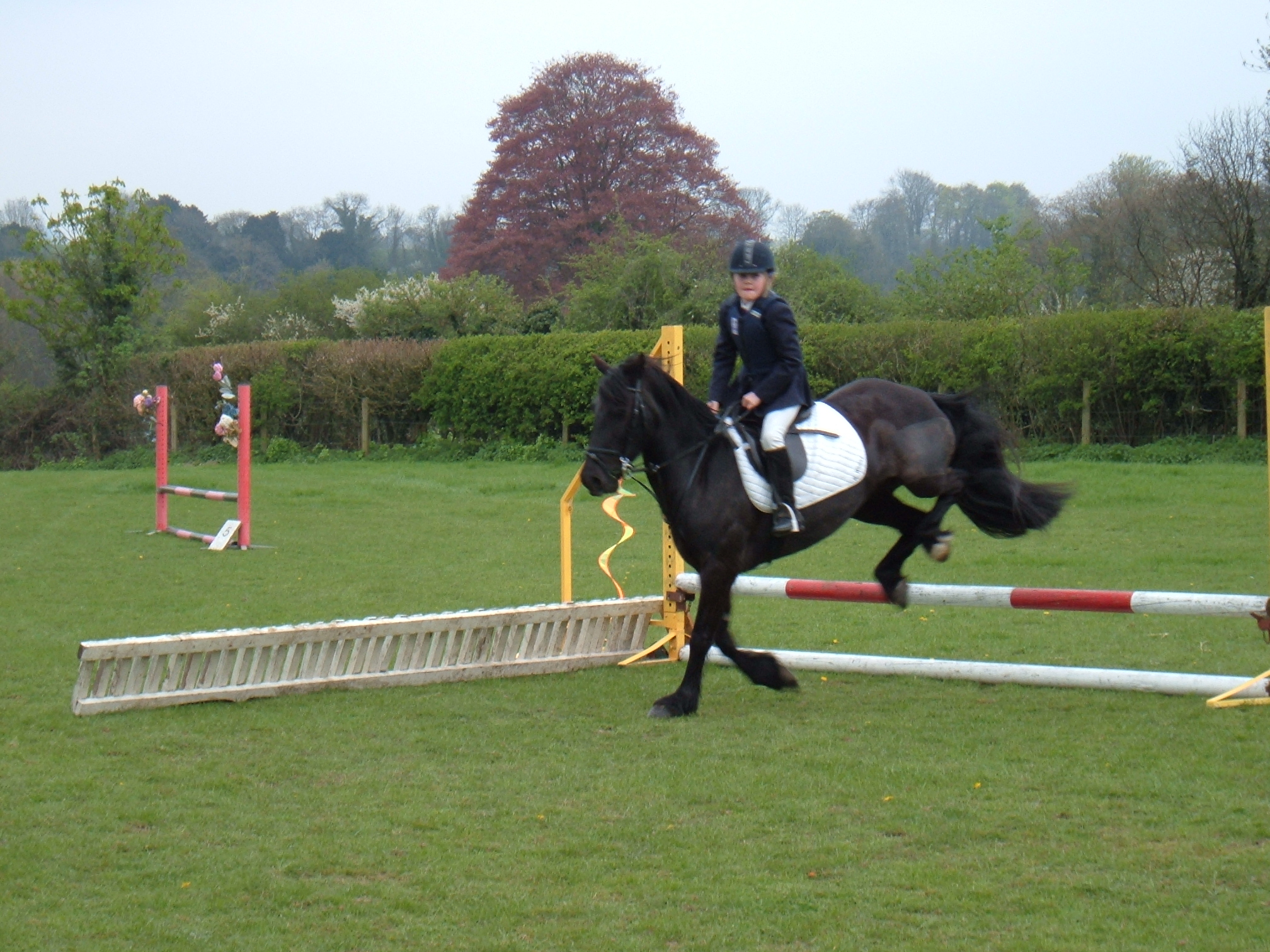 Showjumping sunday 057