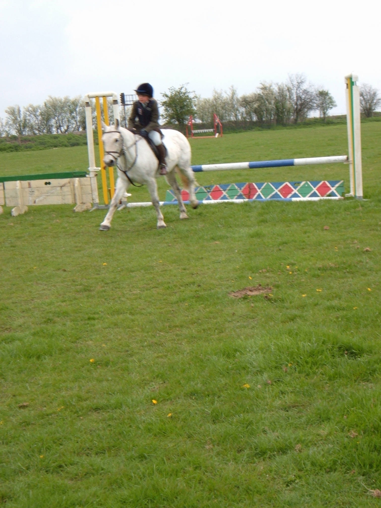 Showjumping sunday 085