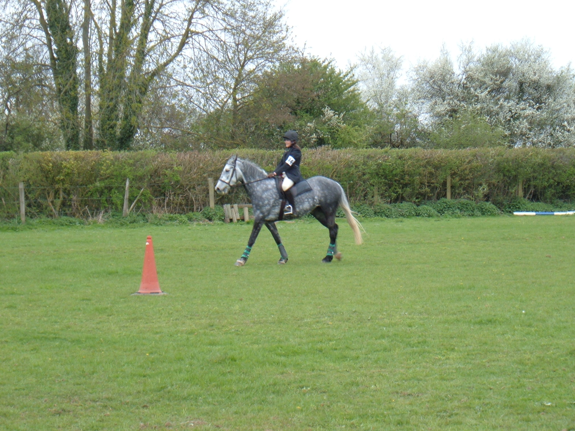 Showjumping sunday 091