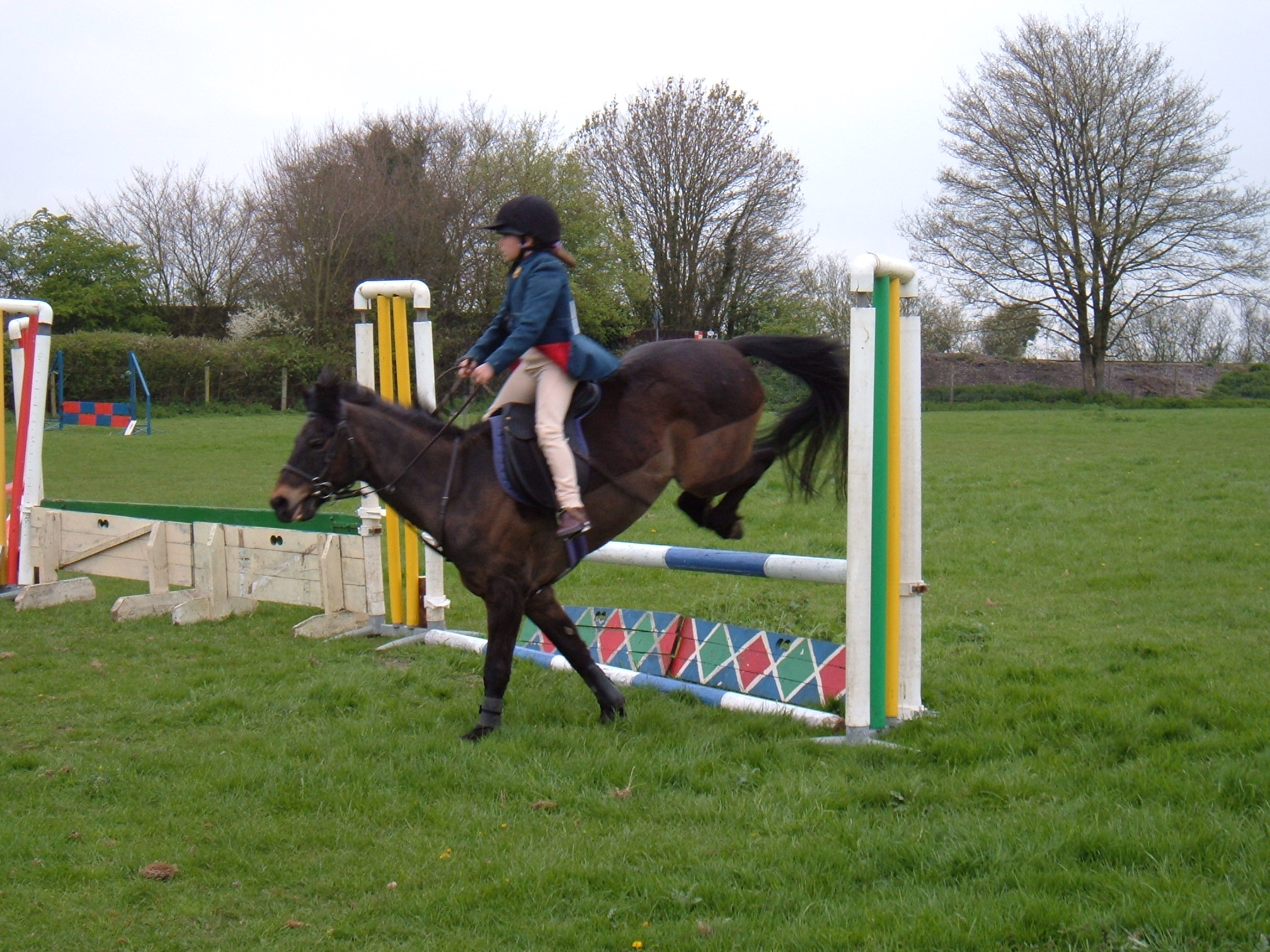 Showjumping sunday 092