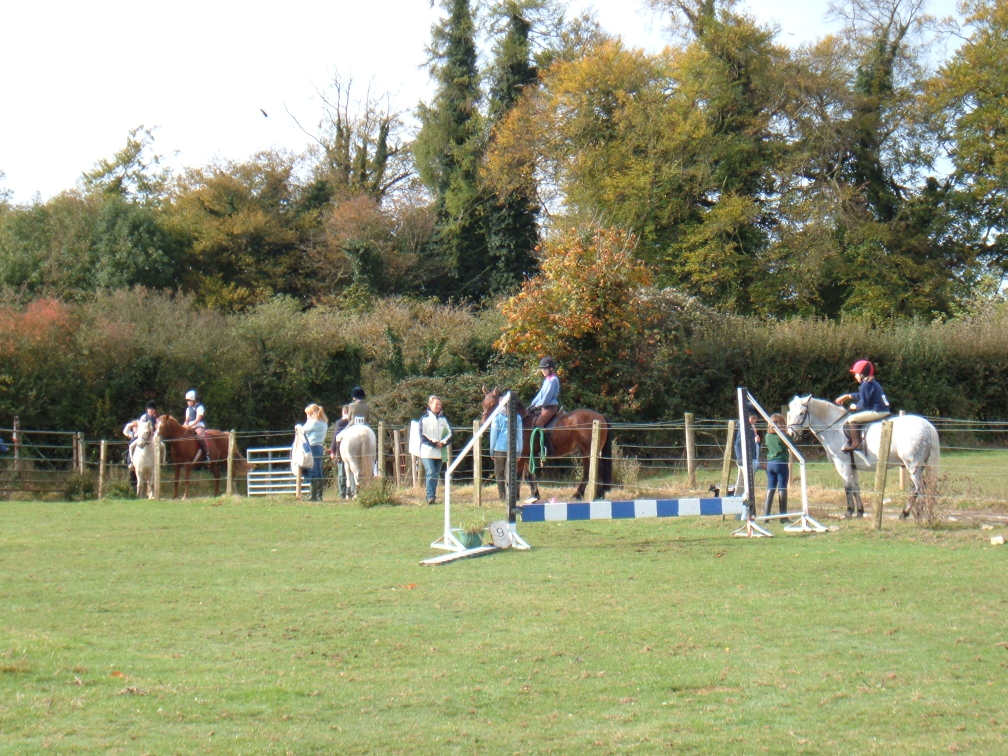 Show Jumping October 2005 Dutch Stables 001