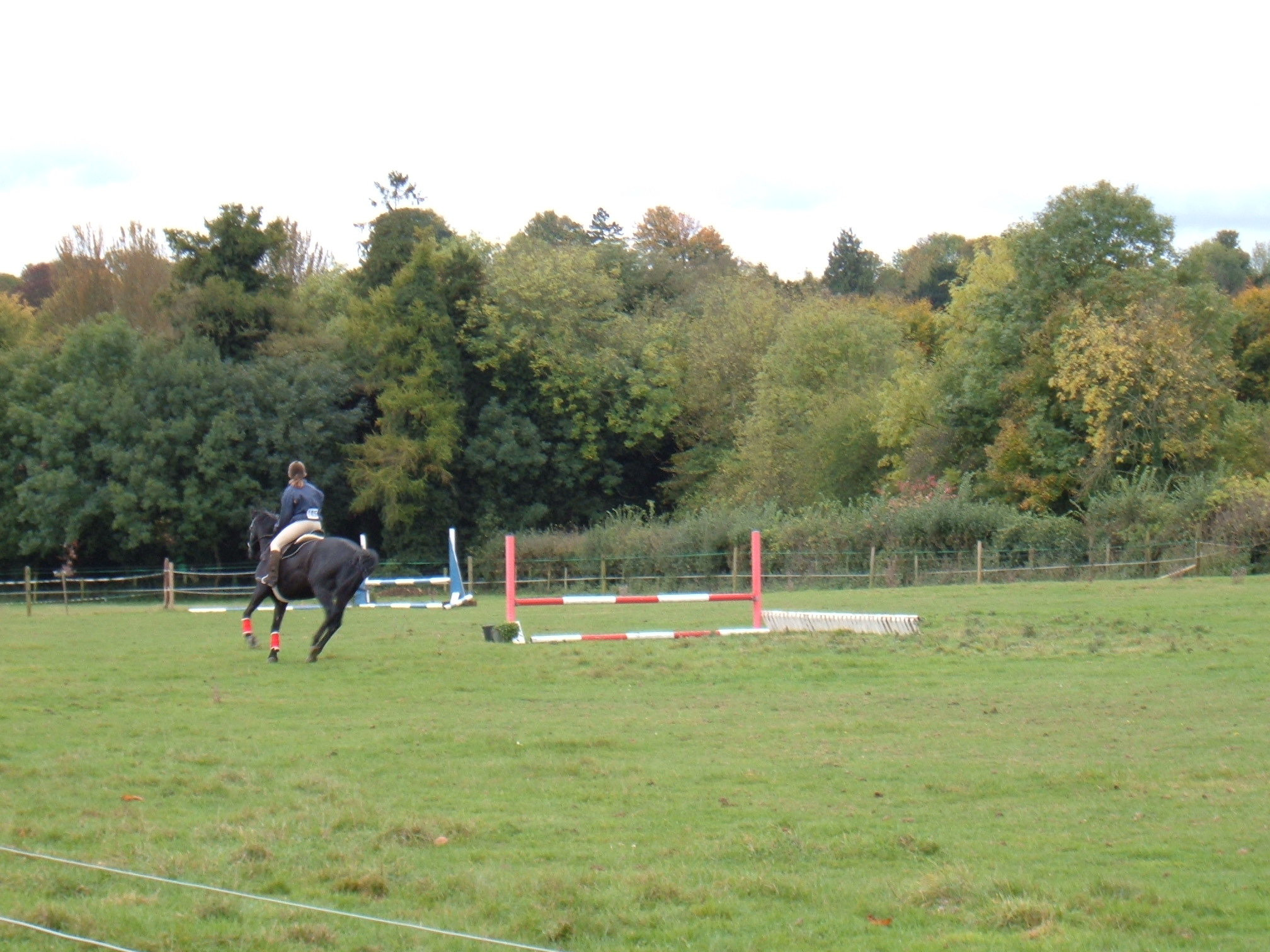 Show Jumping October 2005 Dutch Stables 012