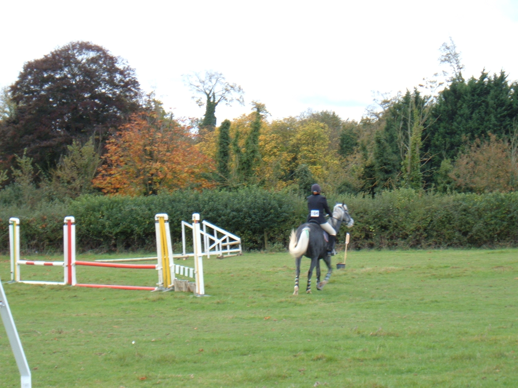 Show Jumping October 2005 Dutch Stables 019
