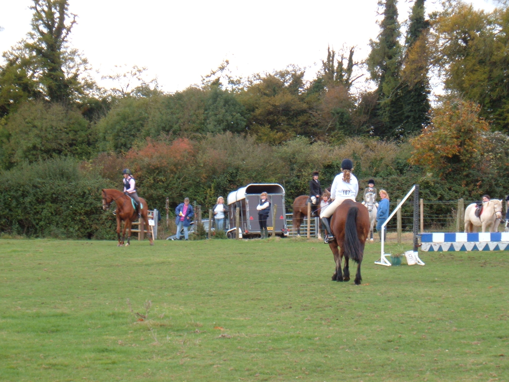 Show Jumping October 2005 Dutch Stables 028