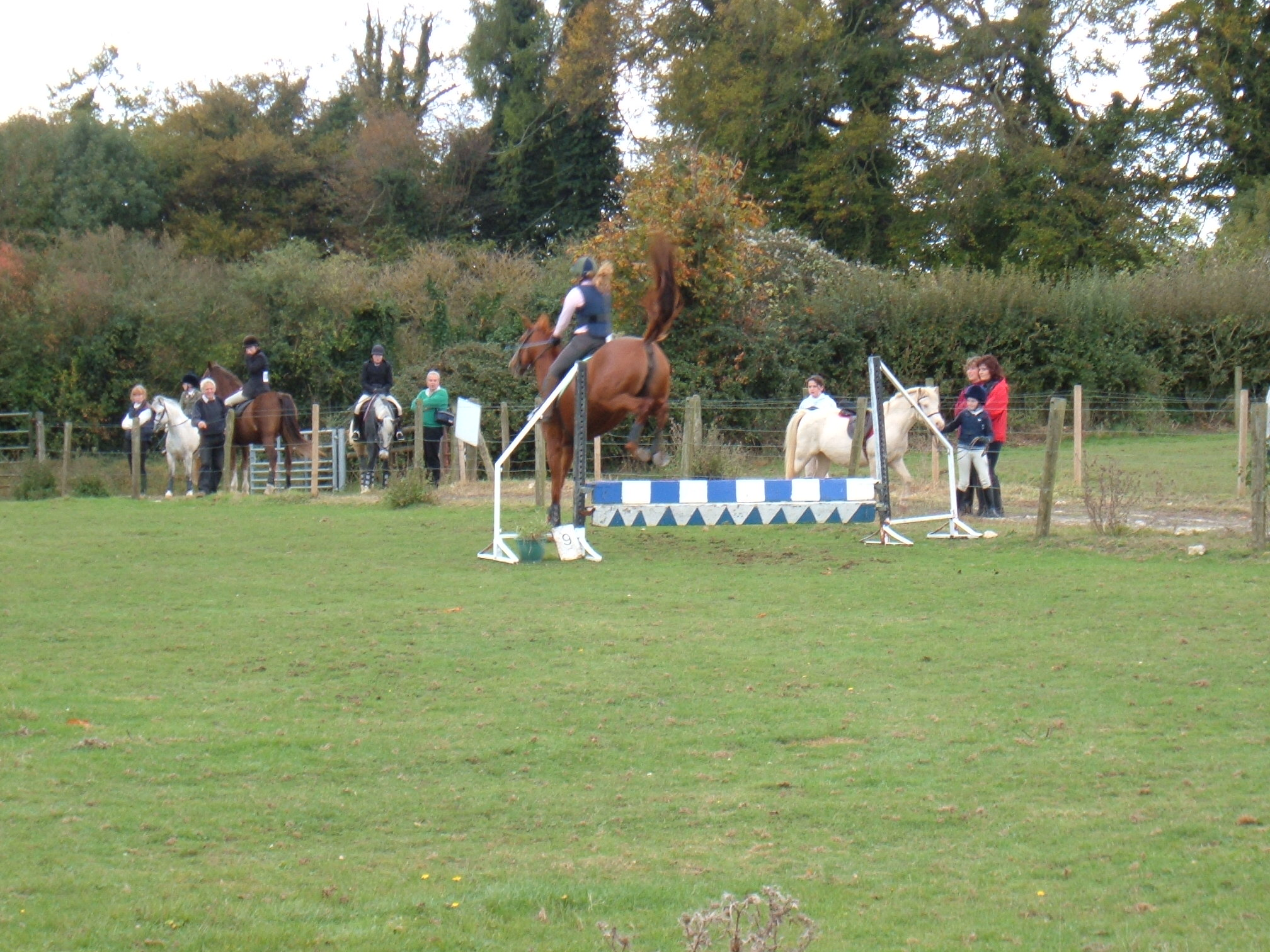 Show Jumping October 2005 Dutch Stables 032
