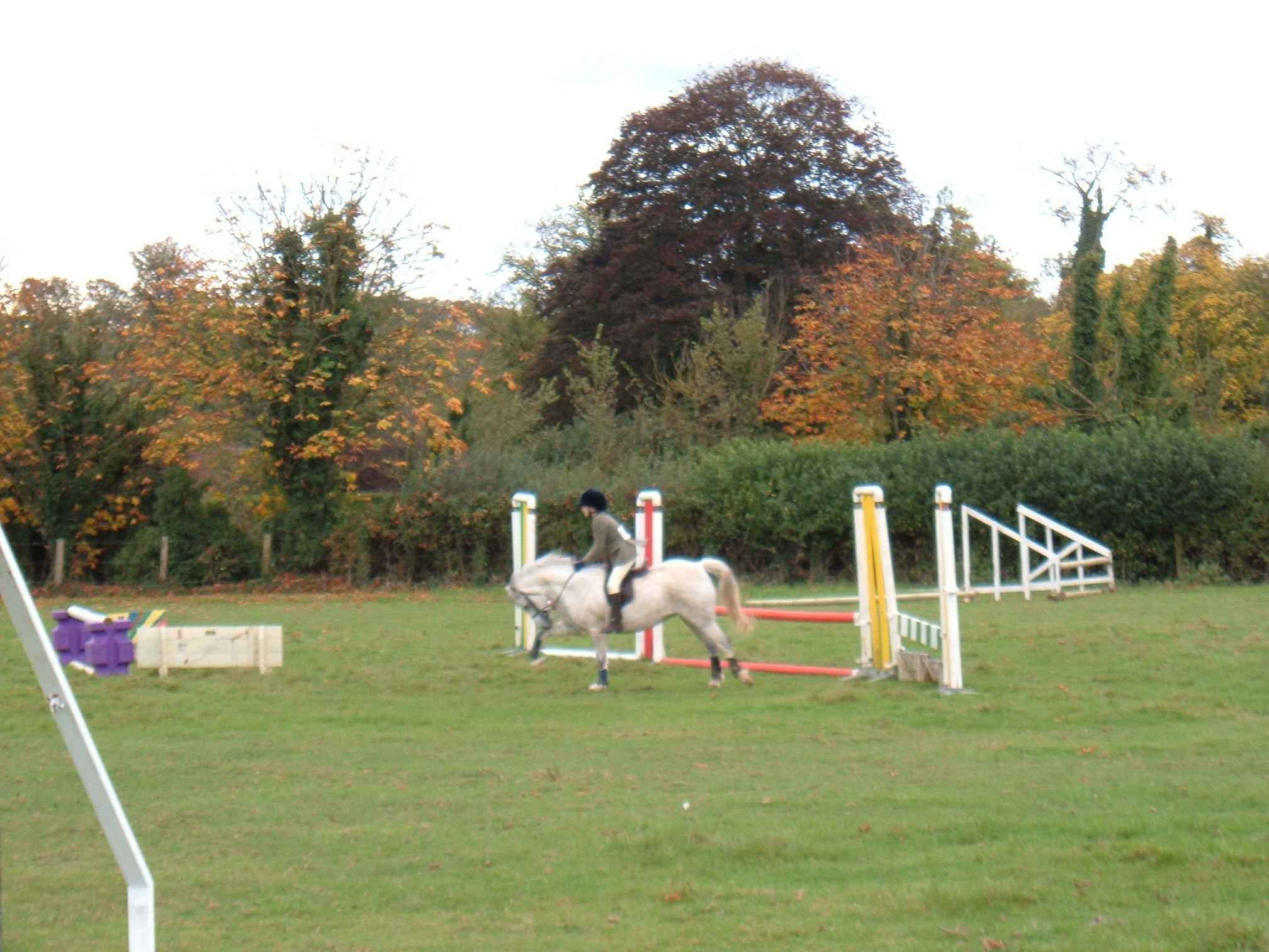 Show Jumping October 2005 Dutch Stables 033