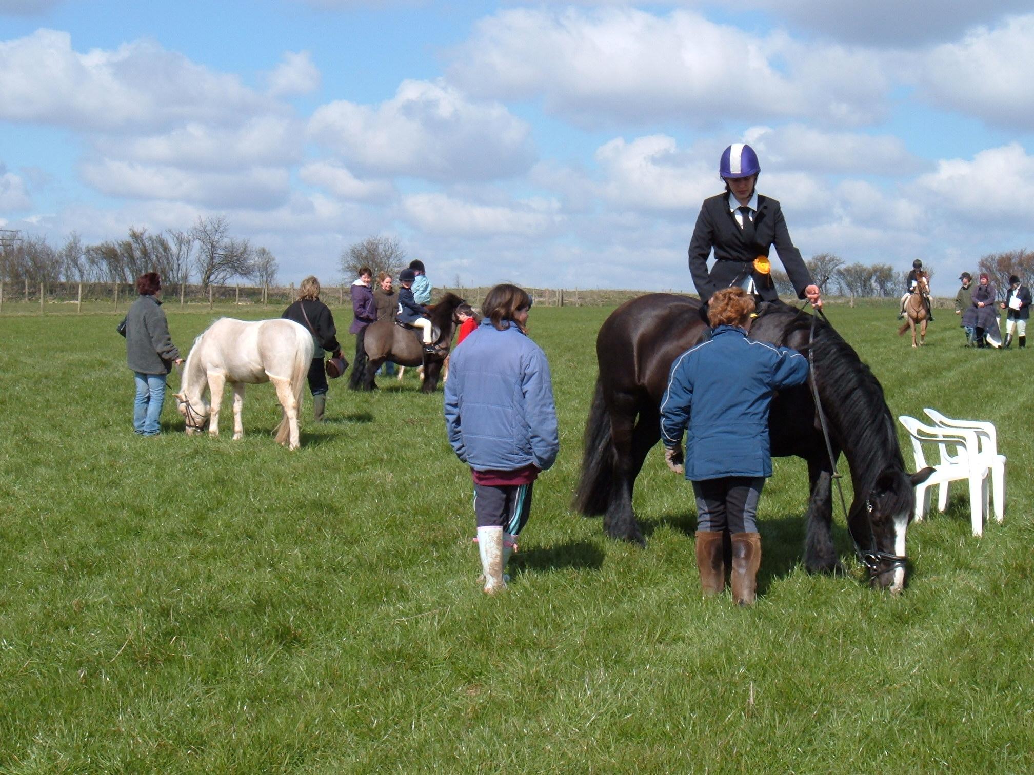 Spring Show 2006 015